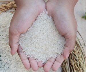 Секреты очищения суставов рисом