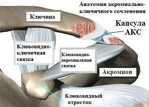 Изображение - Кса плечевого сустава aks