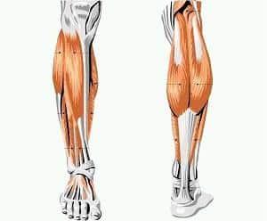Что делать если болят икроножные мышцы