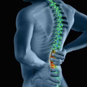 Какие хондропротекторы помогают при остеохондрозе