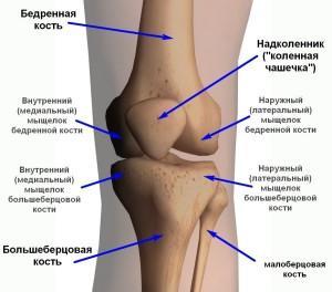 Как лечить перелом мыщелка большеберцовой кости