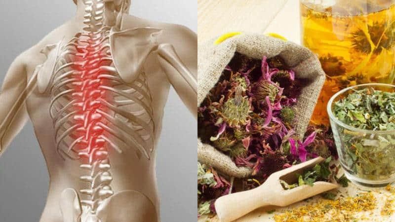 Как лечить кашель при остеохондрозе