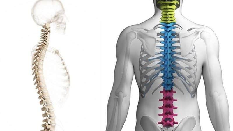 Как лечить синдром Нери при остеохондрозе