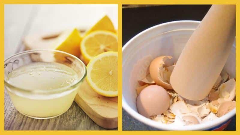Яичная скорлупа с лимонным соком