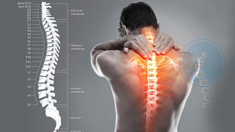 Как лечить эпендимому спинного мозга