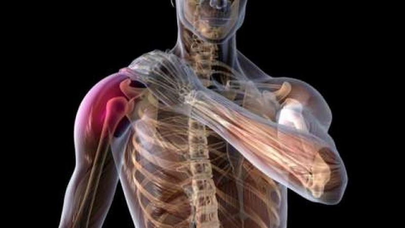 Изображение - Сустав между плечевой костью и лопаткой stroenie-plechevogo-sustava_6
