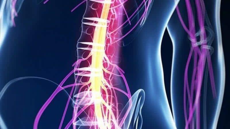 Как лечить интрамедуллярную опухоль спинного мозга