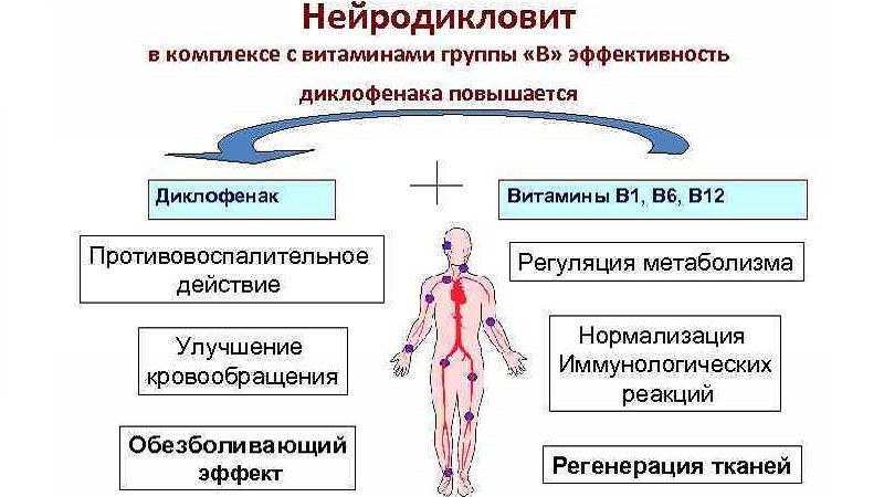 Как применять препарат Нейродикловит