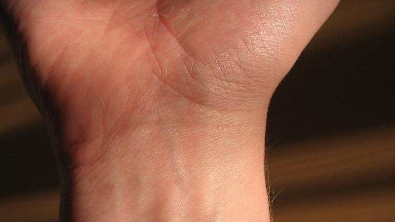 Как устроены кисти рук человека